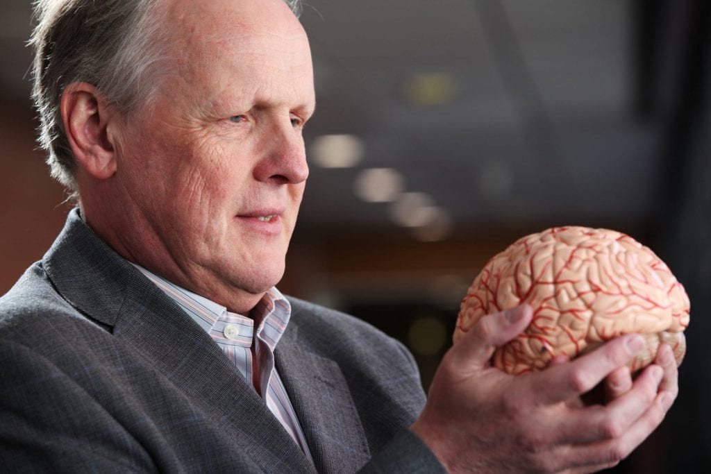 Steve Furber Brain